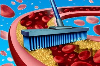 Статины и фибраты снижают уровень холестерина