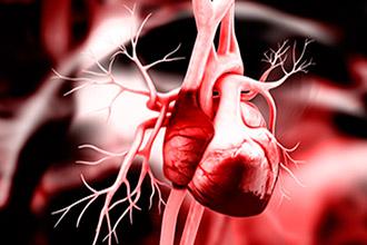 Если увеличен левый желудочек сердца как лечить